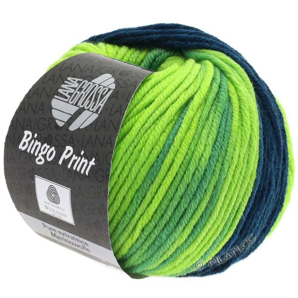 Lana Grossa BINGO Print | 620-petrol/pistacie/lysegrøn
