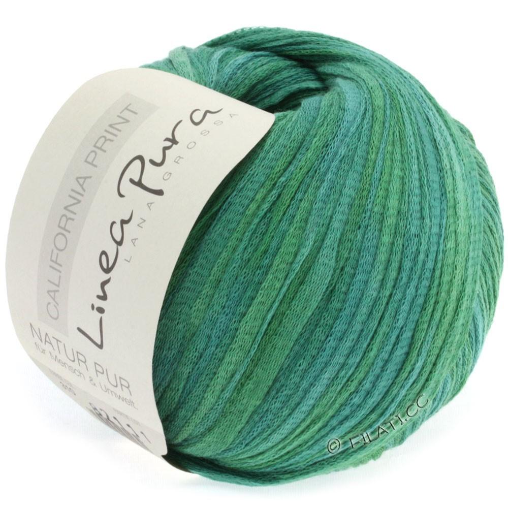 Lana Grossa CALIFORNIA Uni/Print (Linea Pura) | 310-grågrøn/græs