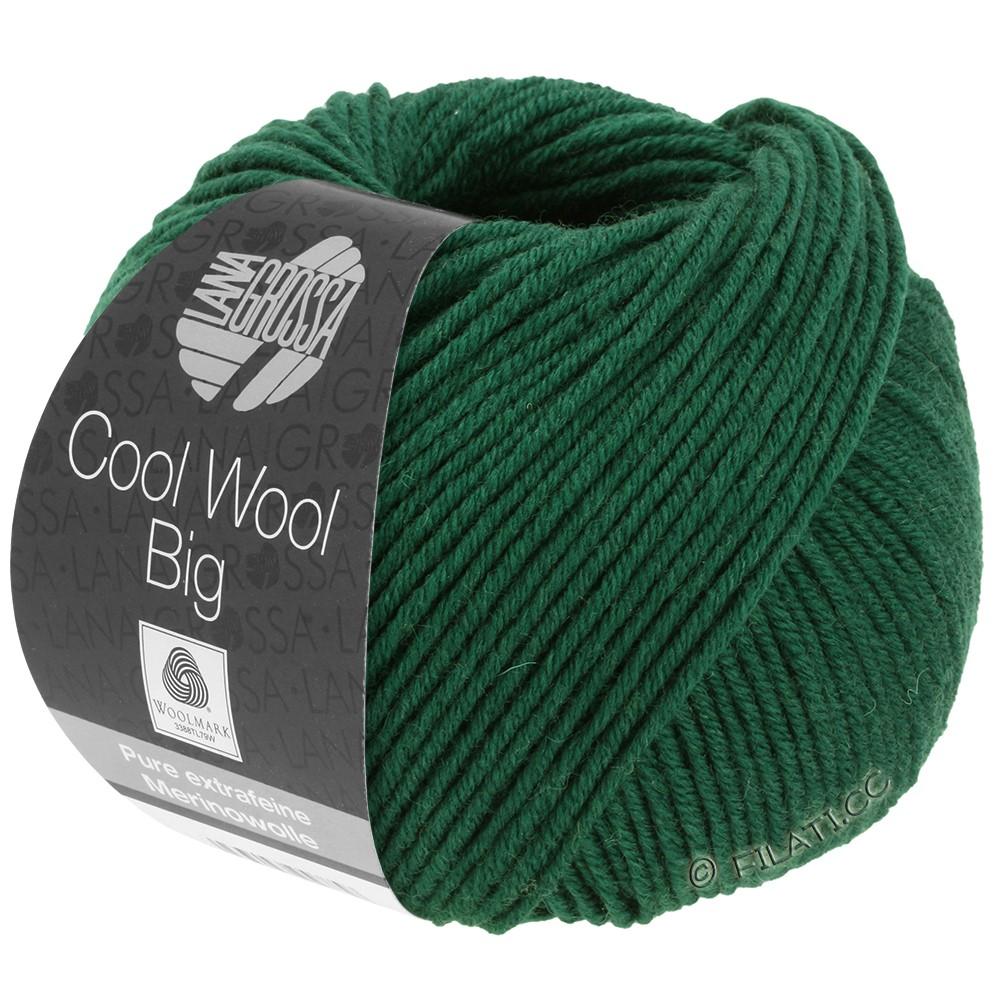 Lana Grossa COOL WOOL Big  Uni/Melange | 0949-flaske grøn