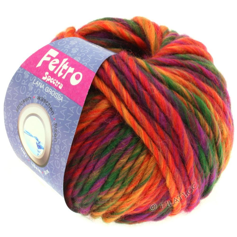 Lana Grossa FELTRO Spectra | 805-rød/orange/violet/flaske grøn