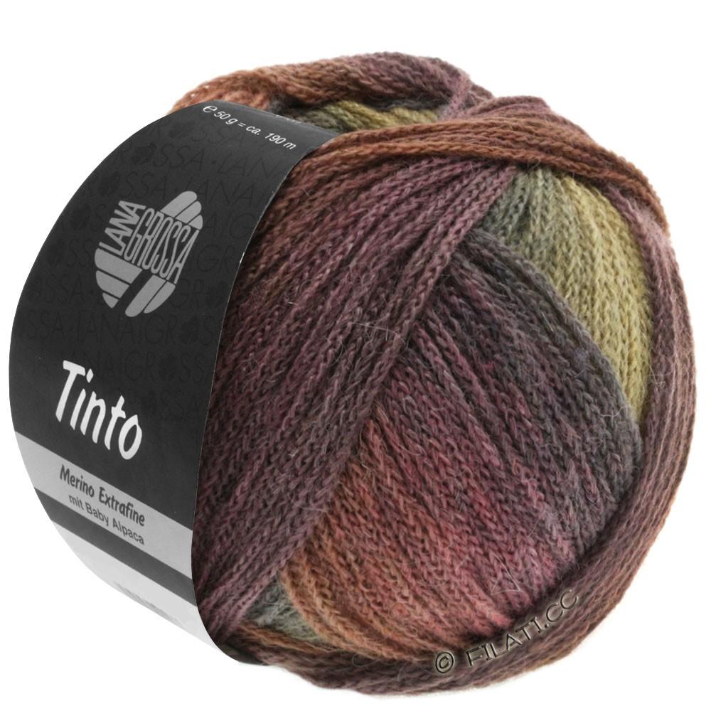 Lana Grossa TINTO | 08-chokoladebrun/nøddebrun/sennep/grågrøn/bær/aubergine/blomme